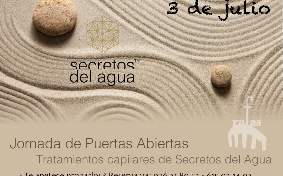 Jornada de Puertas Abiertas – Secretos del Agua: Tratamientos capilares